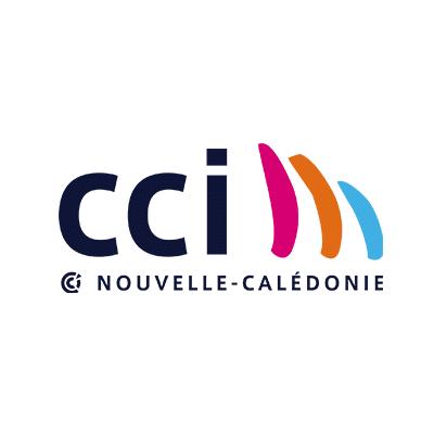 Aéroport et CCI Nouvelle Calédonie, client intra'know